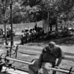 Washington Square Park © Carl Merkin