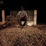 Guard © Felipe Branquinho