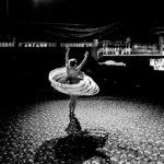Circus Circus' Katrina (Leica M9, 24mm Summilux) © David English