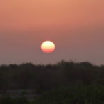 The sun setting over Sir Bani Yas island - the colours are spectacular