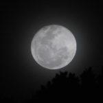 A stunning full moon lights up the night sky