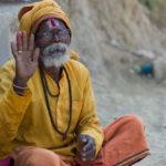 India © Adam Marelli