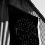 Black Barn © Matt Borkowski