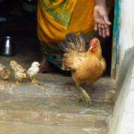 © 100cameras, Gomathi, 17, India