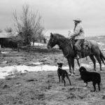 Padlock Ranch - Ranchester, WY 4 © John Langmore