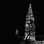 Rathaus By Night: Vienna's City Hall as seen from the park