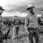 S Ranch - Pryor, MT 2 © John Langmore