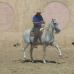 The Cuadra San Francisco is the top riding school in Mexico