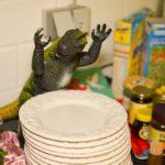 """catering tyrannosaurus mannheim © Andreas """"Bär"""" Läsker"""