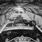 Kew One, Leica M9/Summicron 50mm © Robert Callway
