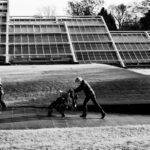 Kew Two, Leica M9/Summicron 50mm © Robert Callway