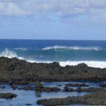 Viva Varun: In Mauritius!