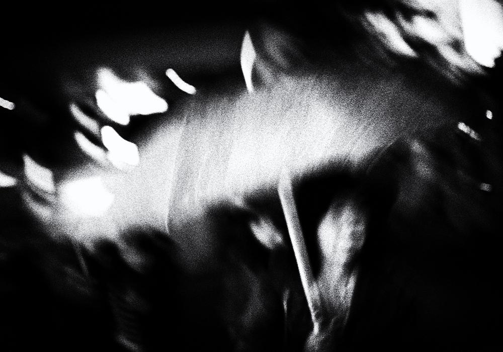 © Ryan Neilan